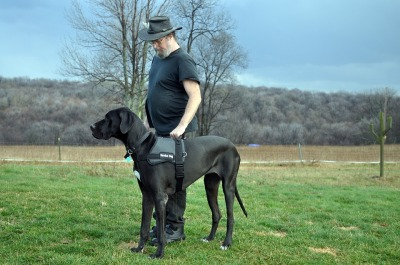 Man with a service dog [public domain image]