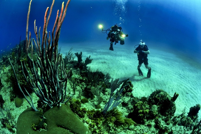 Two divers underwater, near a reef
