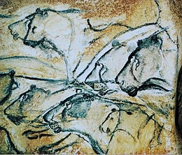 (Replica of) cave lion drawings from Chauvet Cave in Southern France from the Aurignacian period (c. 35,000 to 30,000 years old)